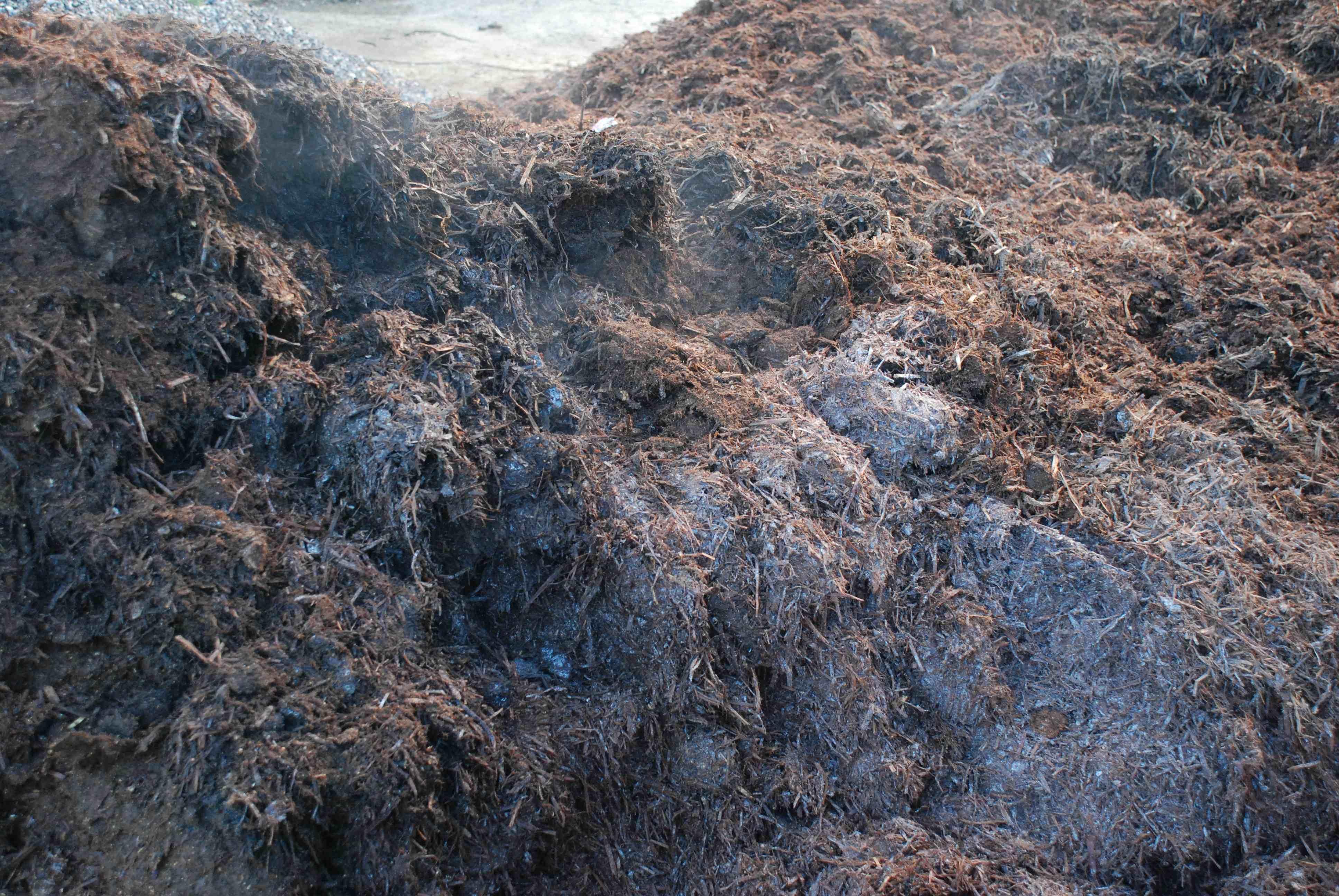 Spent Mushroom Compost
