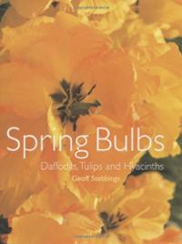 - all about Daffodils, Tulips and Hyacinths