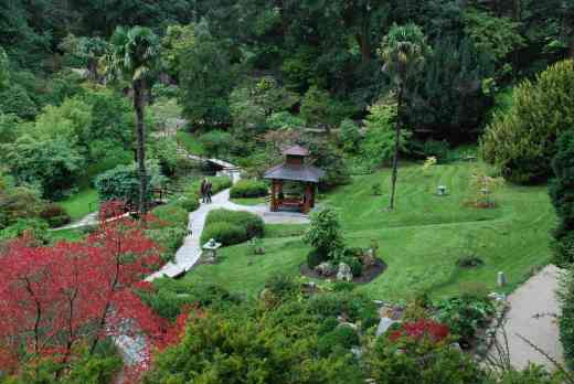The Japanese Garden, Powerscourt - well worth a visit