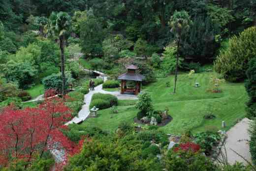 The Japanese Garden, Powerscourt - well worth a visit