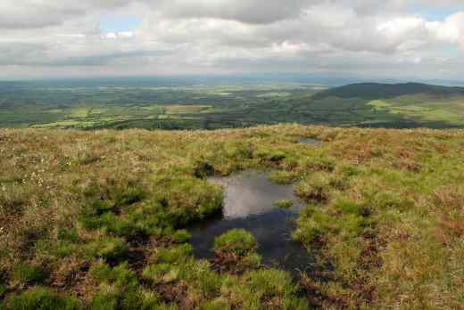 mount leinster slieve bawn 2 carlow2
