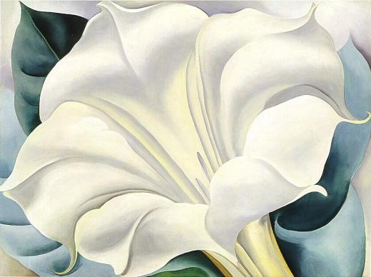 A datura painted by Georgia O'Keefe. Image in the public domain to my knowledge