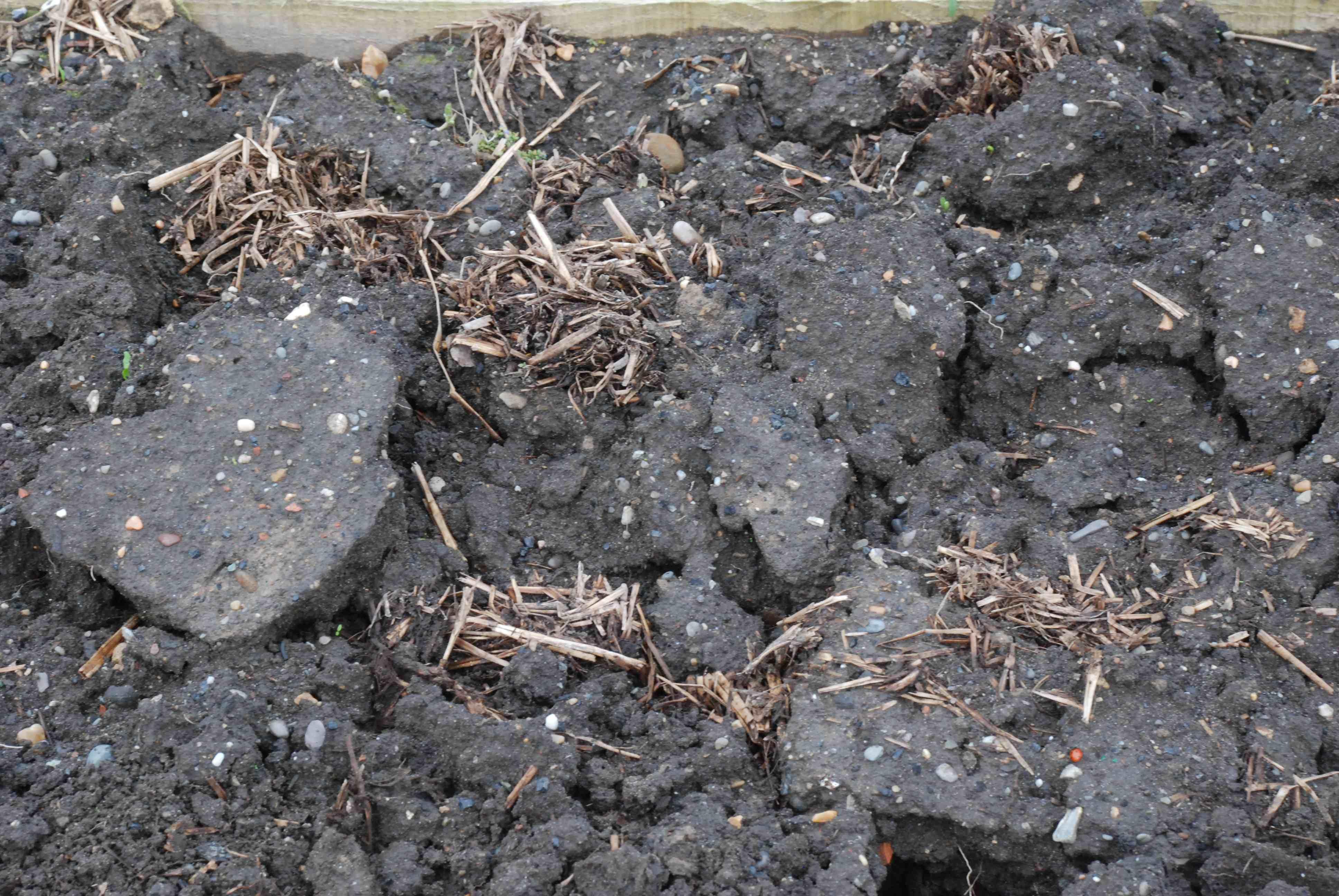 Soil preparation for sowing the biking gardener for Mushroom soil