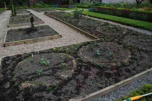 planting circles may