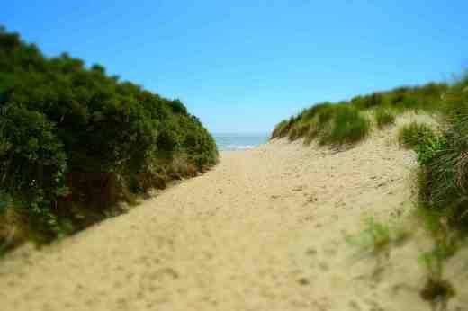 Castlemorris beach, each of Kilmuckridge. A short walk from the car park, through the sand dunes
