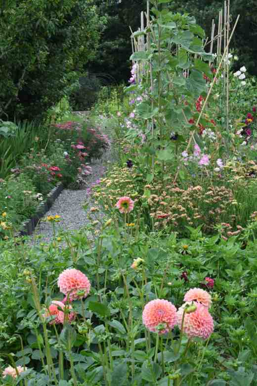 cutting garden july 14 2