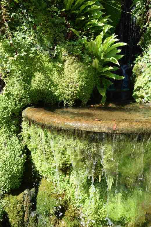 jap garden powerscourt