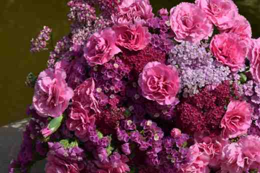 A hand-tied bunch with statice, achillea and pinks