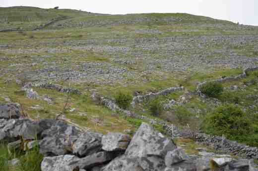 The Burren, near Killinaboy