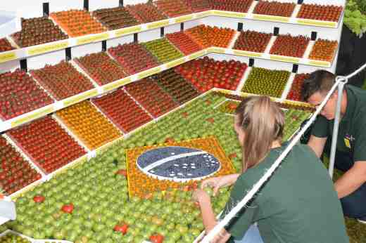 The Flavourfresh stand demonstrated the range of toms they grow. They are local to the show and grow premium toms for supermarkets. The theme for the show was Rio and their stand had an obvious 'World Cup' theme. The green toms kept ripening and had to be amended daily to keep the pitch green.