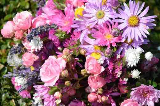 fairy lave bouquet