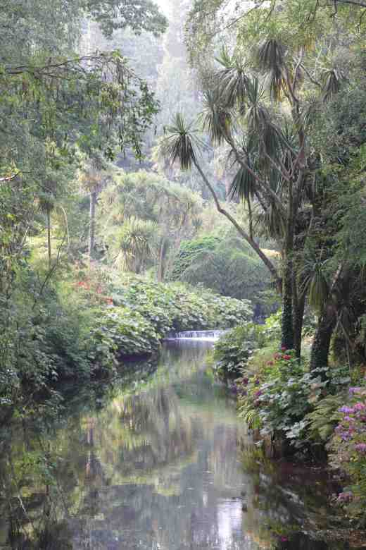 The mild climate means that many 'exotic' plants thrive at Mount Usher, even after the cold winters 4-5 years ago. The slight mist that was starting to win the battle with the late summer sunlight gives the scene a primeval feel.