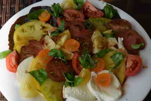 plate of toms sept