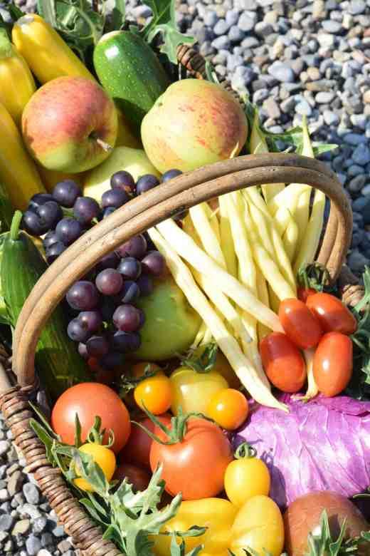 veg basket