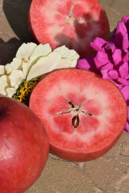 apple redlove cut