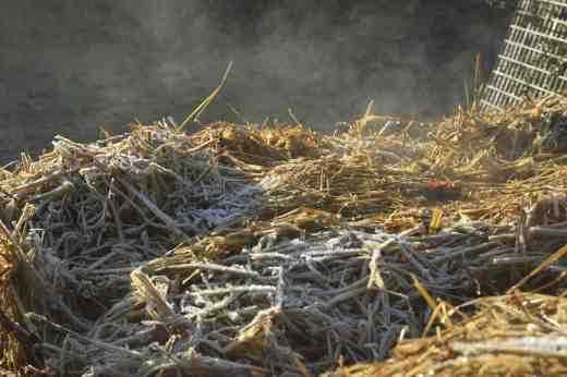 composting 14 4
