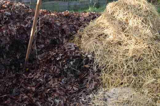 composting 14