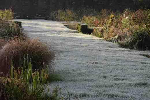 Low sun sliding across the frosted lawn gives the garden a new look