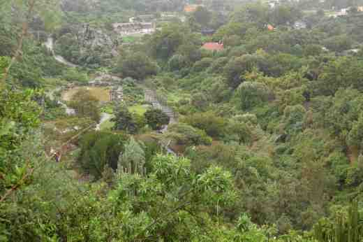 View of the garden from halfway down the cliff