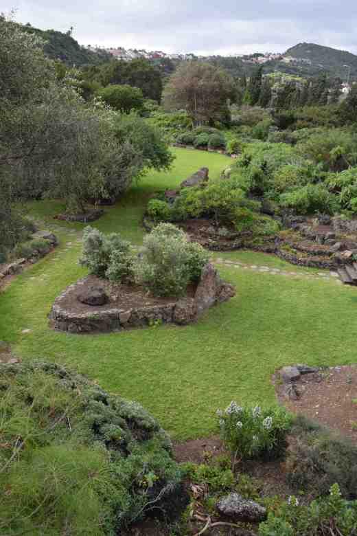 The garden of Canary natives