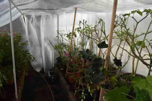 insulation jan 15