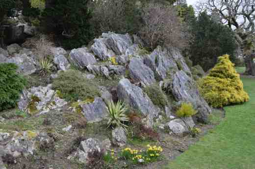or anywhere on the rock garden...