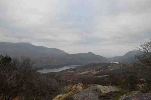 View near Ladies View in Killarney National Park
