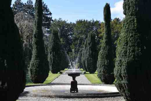 Narrowly wired irish yews line the formal gardens just below the Castle.