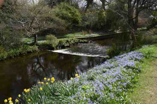 The River Vartry runs through the river, making beautiful views