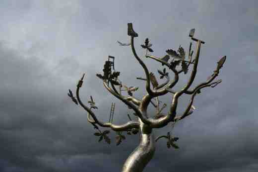 clonroche tree2