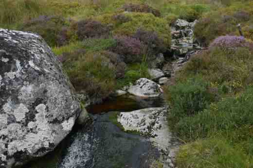 WICKLOW STREAM