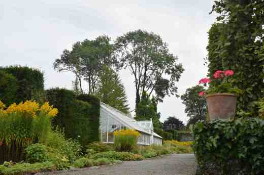 After exploring the acres of woodland grounds and returning to the formal walled garden there are a few greenhouses and the millennium garden