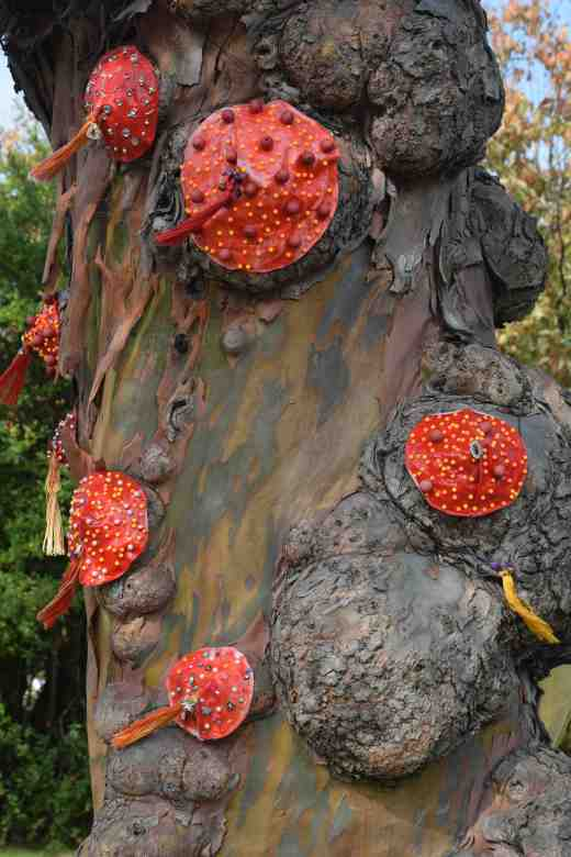 Burlesque by Mags O'Dea. While I am in a grump I have to say that I think this poor Eucalyptus gunnii must be totally humiliated by having wax 'breasts' stuck on it! Poor tree.