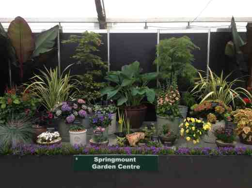 bloom stand 169