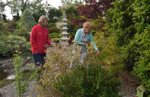 Iris and Elaine from Springmount  Garden Centre