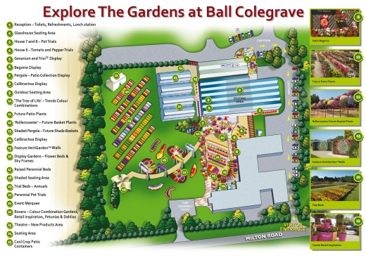 BallColegrave Map