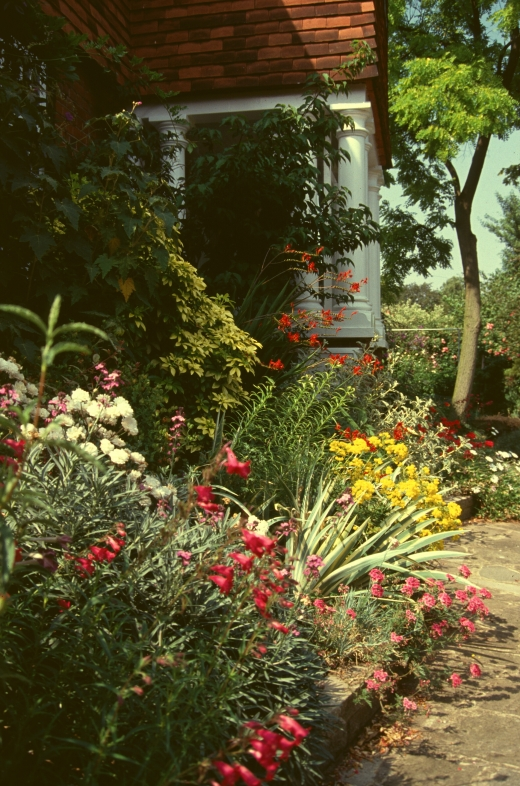 frances perry front Garden