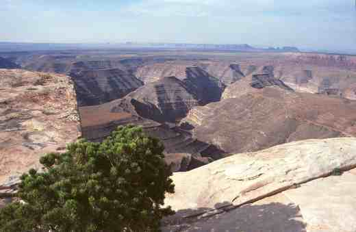 muley-point-utah-view-copy