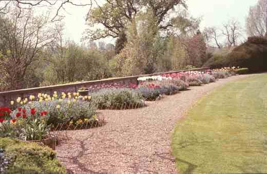 myddelton-bedding-beds-newly-planted-copy
